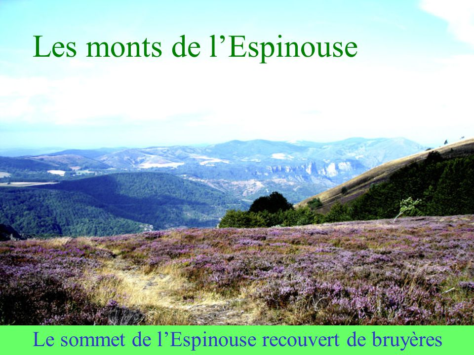 Les monts de l'Espinouse