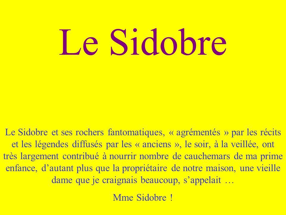 Le Sidobre
