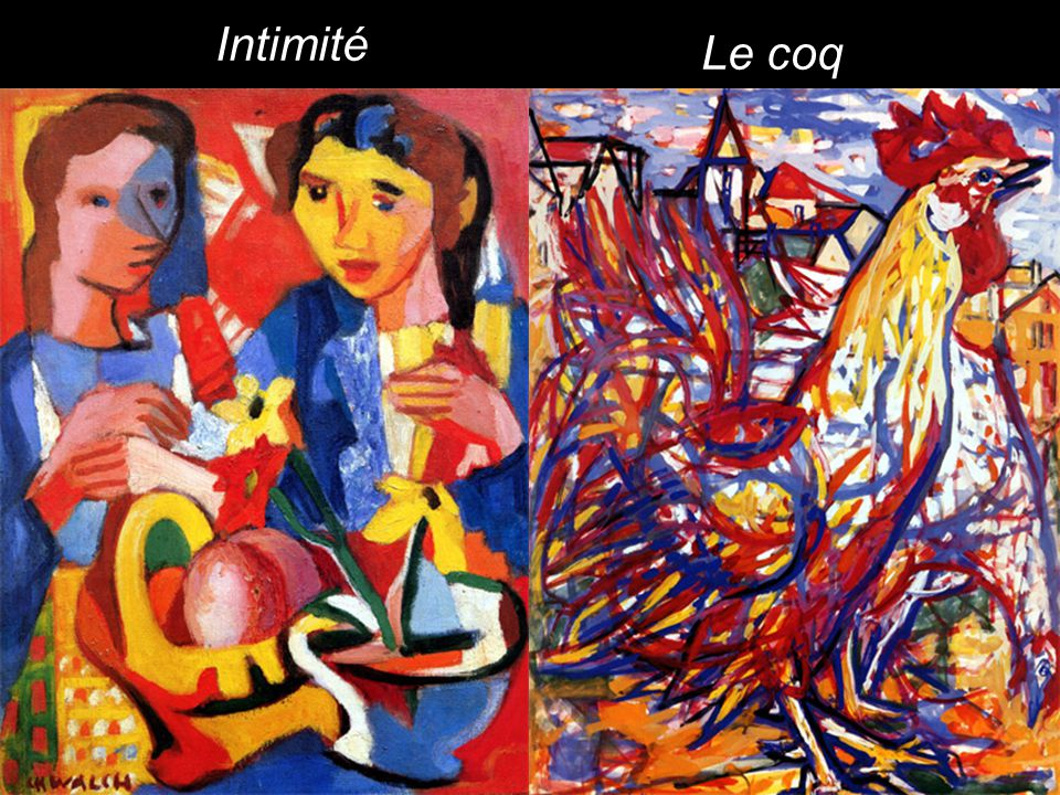 Le coq Intimité