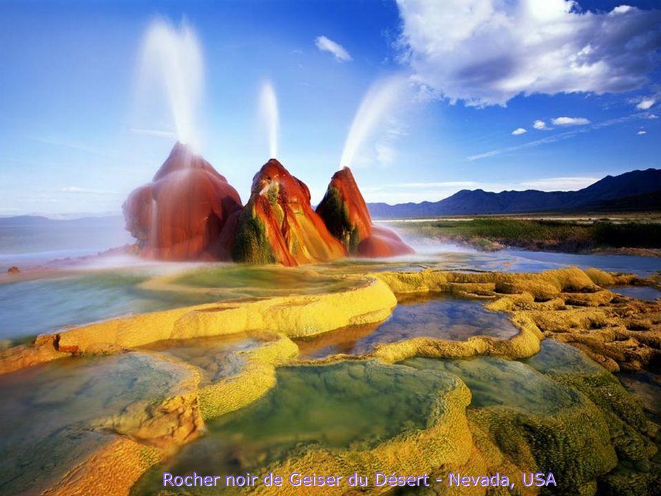 Rocher noir de Geiser du Désert - Nevada, USA