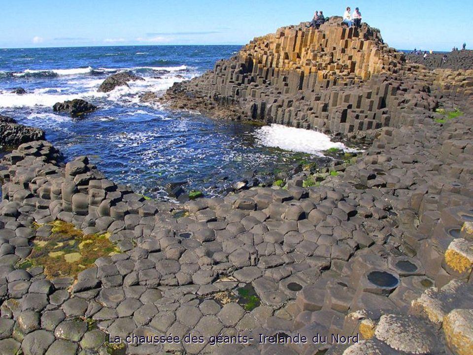 La chaussée des géants- Irelande du Nord