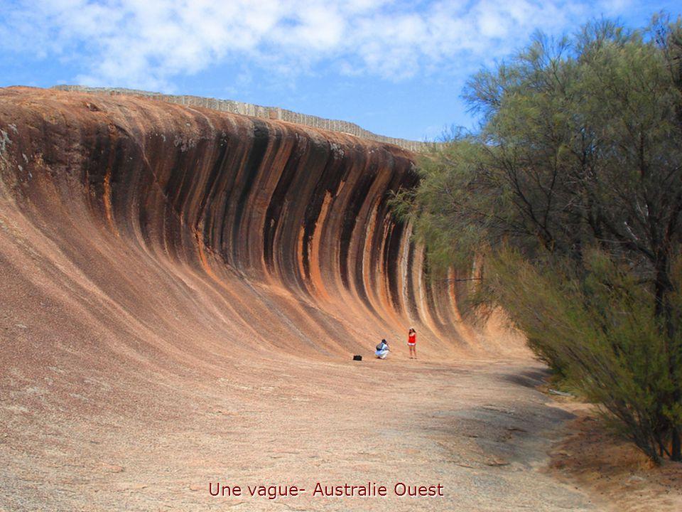 Une vague- Australie Ouest