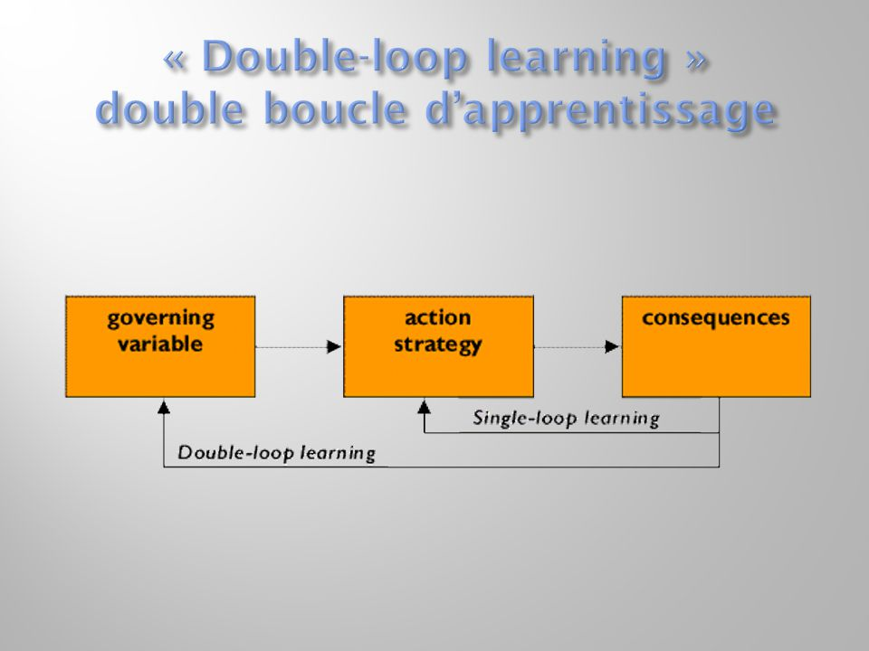 « Double-loop learning » double boucle d'apprentissage