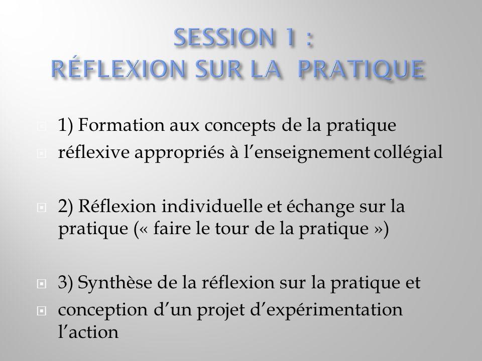 SESSION 1 : RÉFLEXION SUR LA PRATIQUE