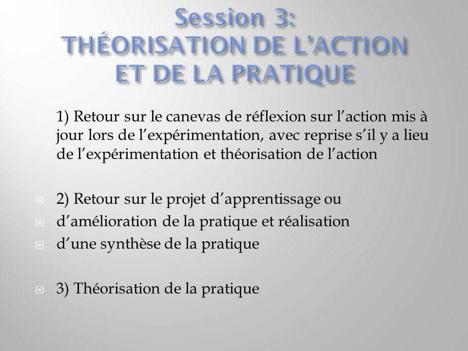 Session 3: THÉORISATION DE L'ACTION ET DE LA PRATIQUE