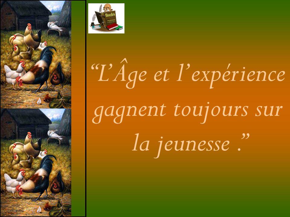 L'Âge et l'expérience gagnent toujours sur la jeunesse .