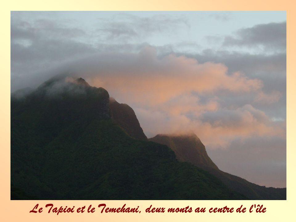 Le Tapioi et le Temehani, deux monts au centre de l île