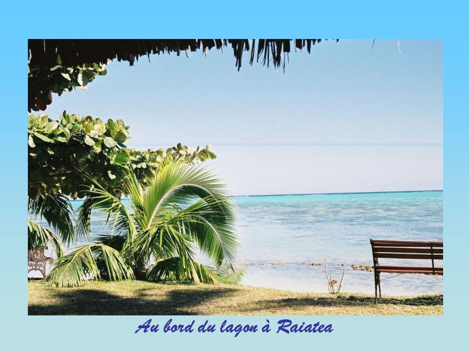 Au bord du lagon à Raiatea