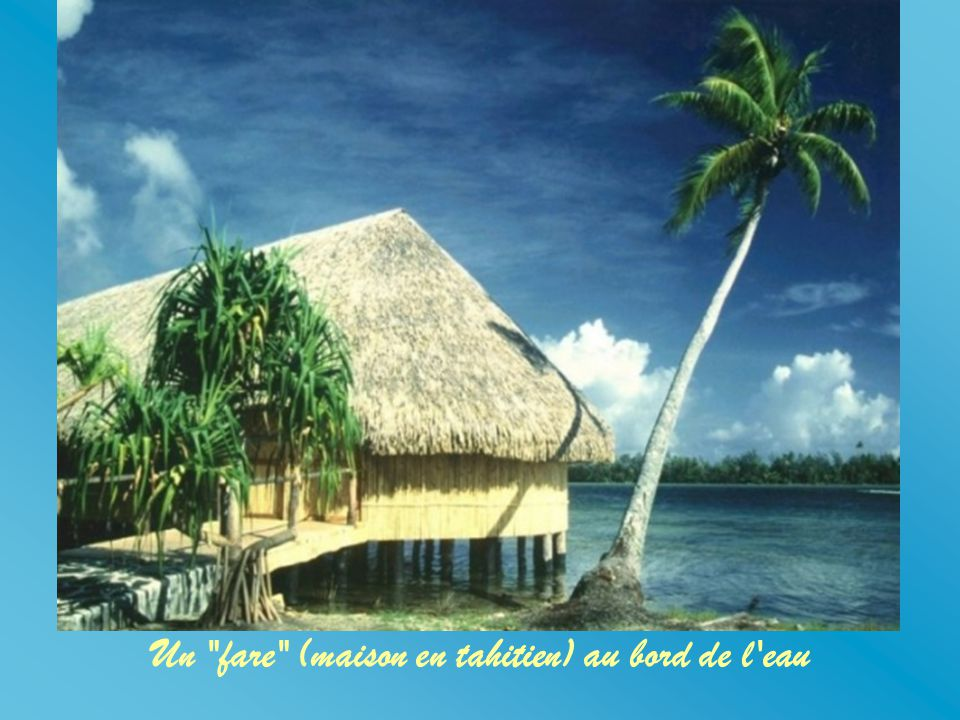 Un fare (maison en tahitien) au bord de l eau