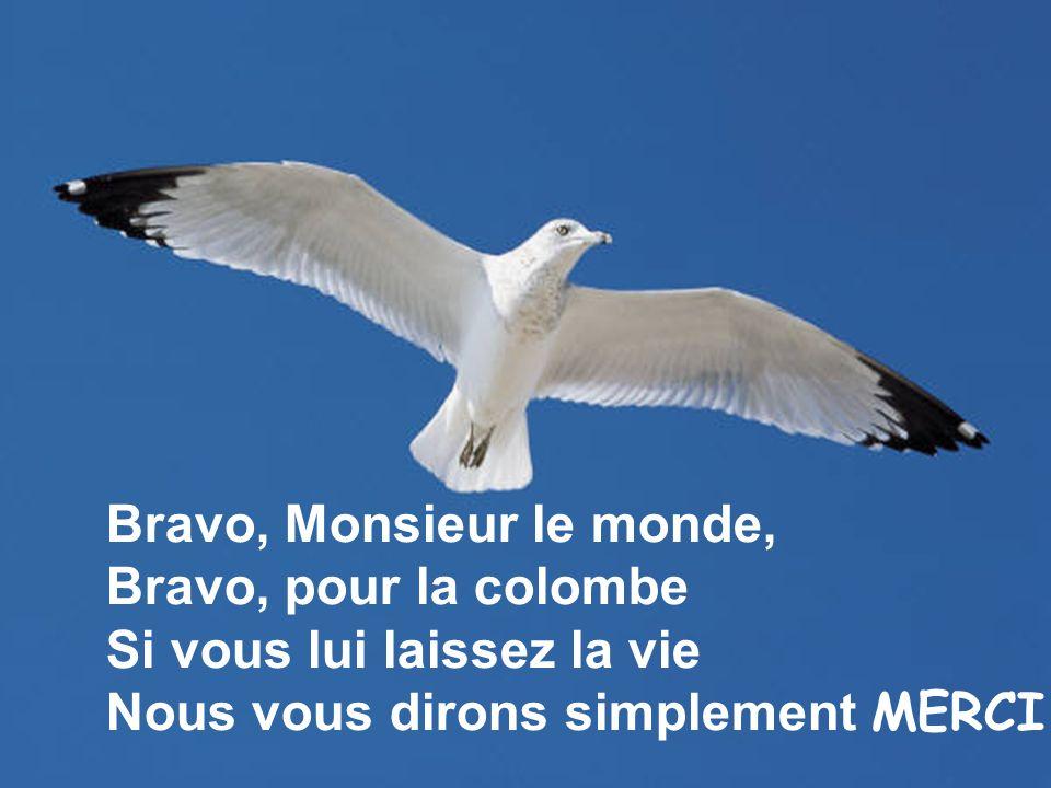 Bravo, Monsieur le monde,