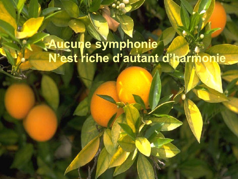 Aucune symphonie N'est riche d'autant d'harmonie