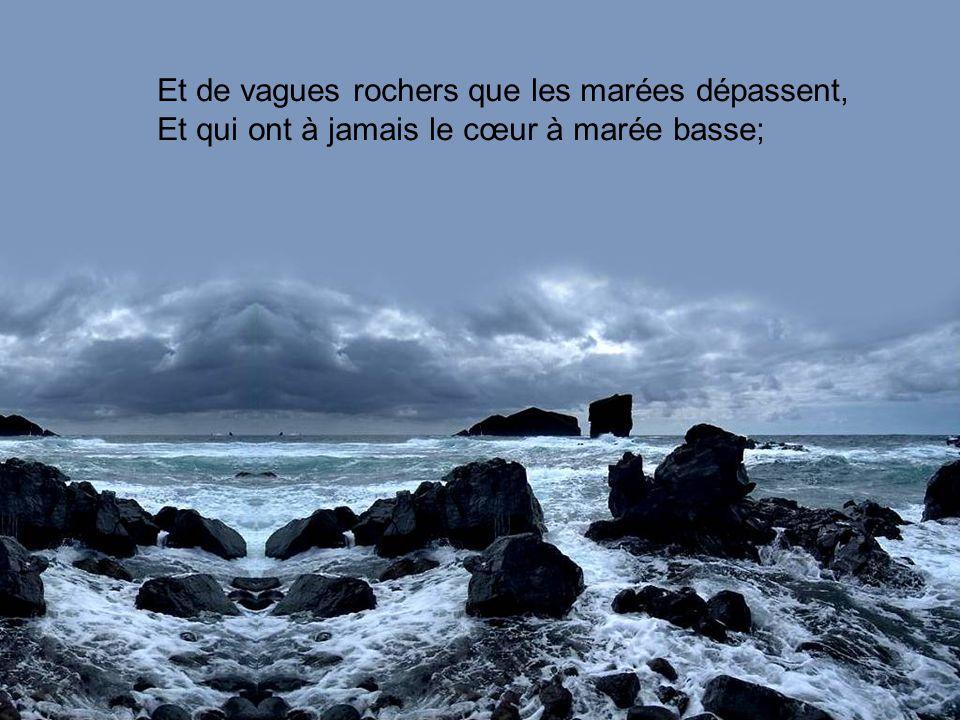 Et de vagues rochers que les marées dépassent,
