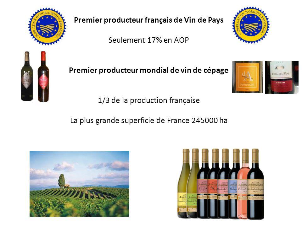 Premier producteur français de Vin de Pays Seulement 17% en AOP