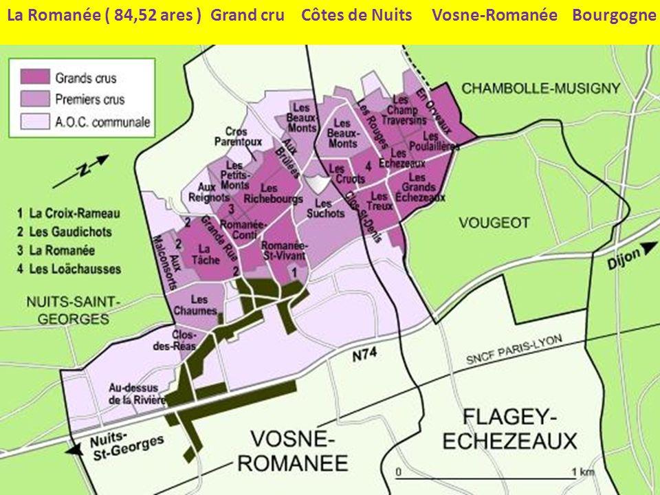 La Romanée ( 84,52 ares ) Grand cru Côtes de Nuits Vosne-Romanée Bourgogne
