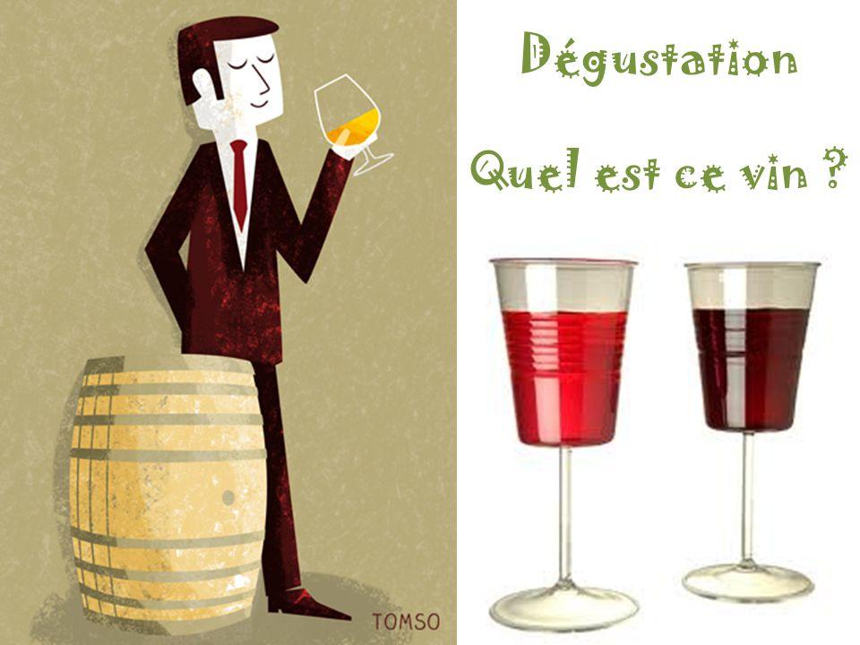 Dégustation Quel est ce vin