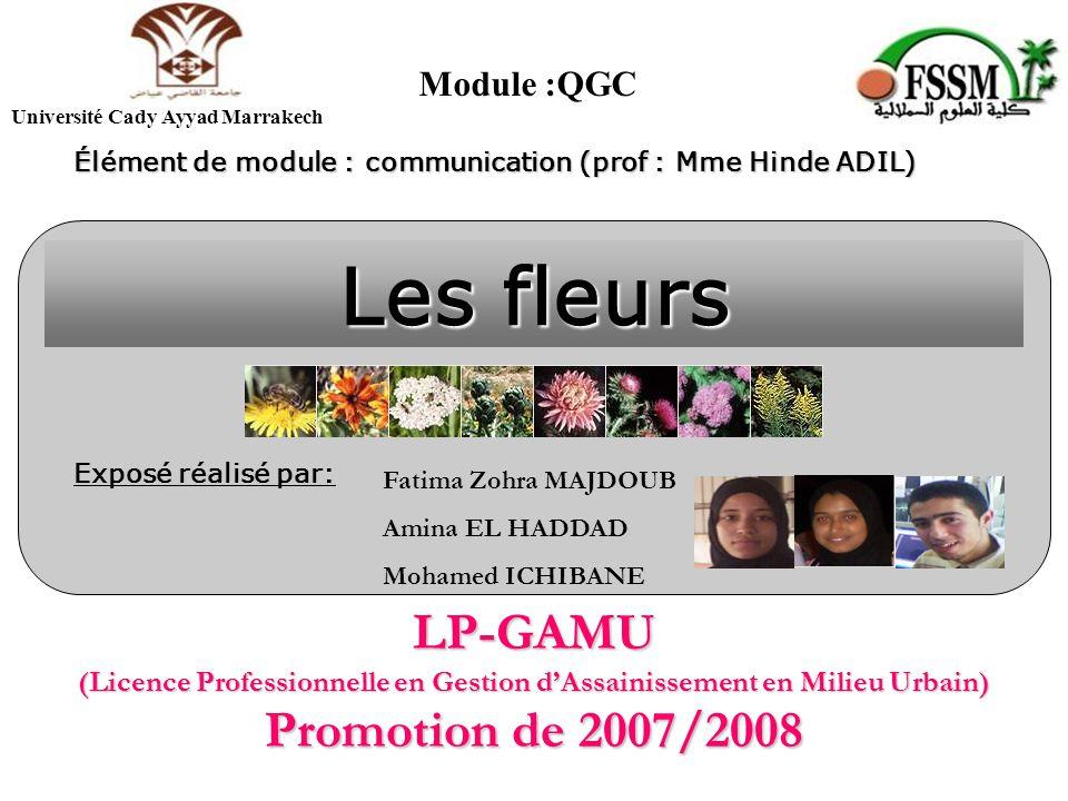 Module :QGC Université Cady Ayyad Marrakech. Élément de module : communication (prof : Mme Hinde ADIL)