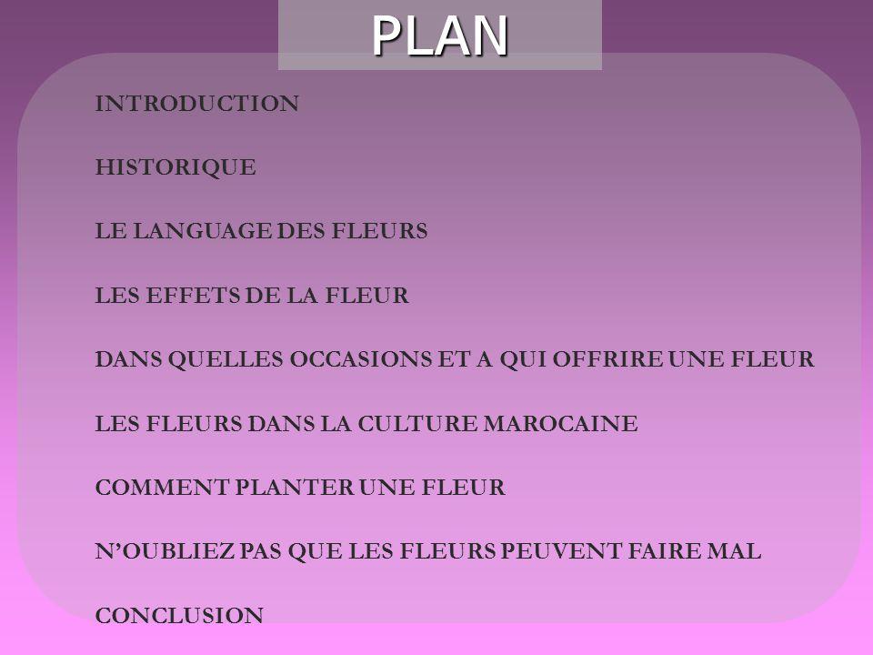 PLAN INTRODUCTION HISTORIQUE LE LANGUAGE DES FLEURS