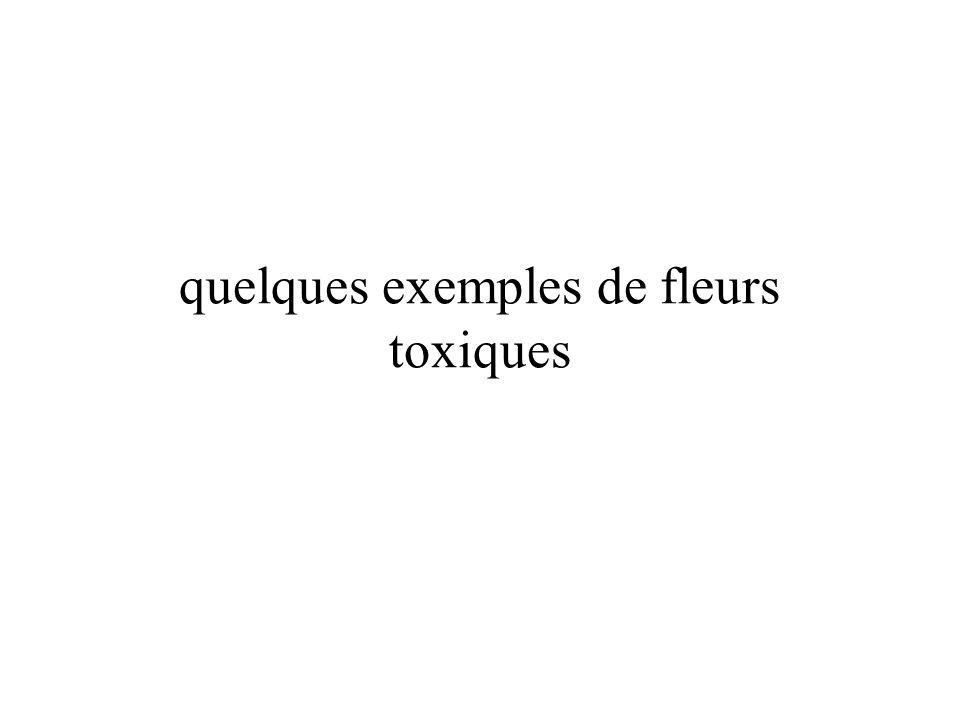 quelques exemples de fleurs toxiques