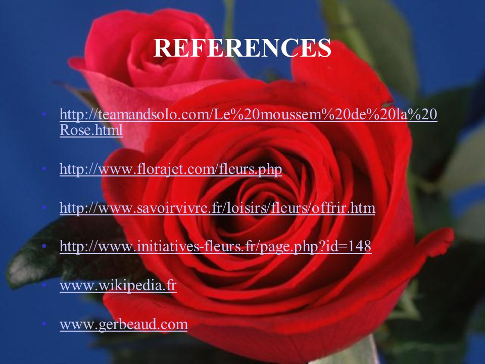 REFERENCES http://teamandsolo.com/Le%20moussem%20de%20la%20Rose.html