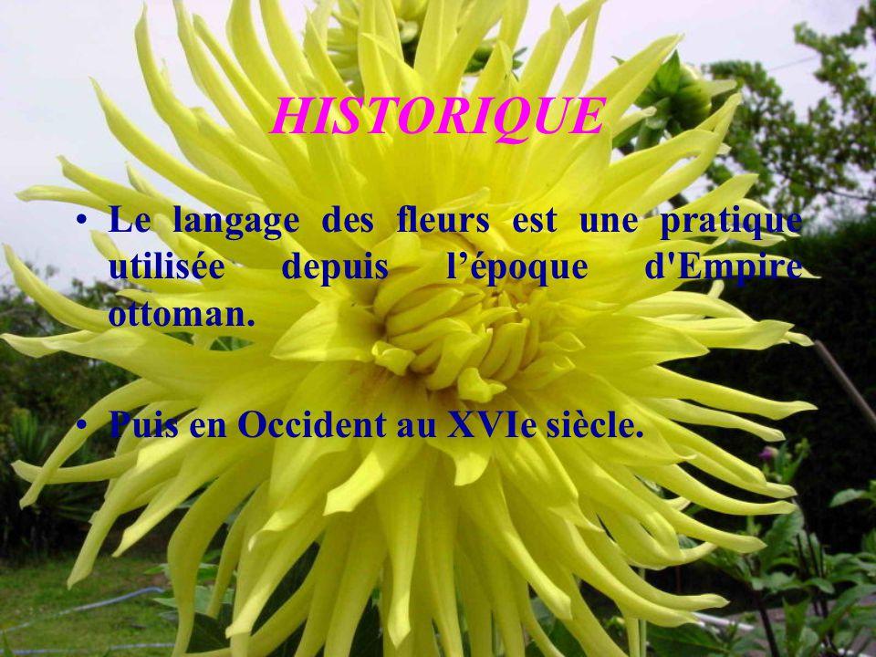 HISTORIQUE Le langage des fleurs est une pratique utilisée depuis l'époque d Empire ottoman.