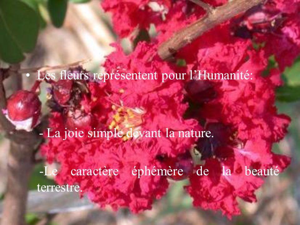 Les fleurs représentent pour l'Humanité: