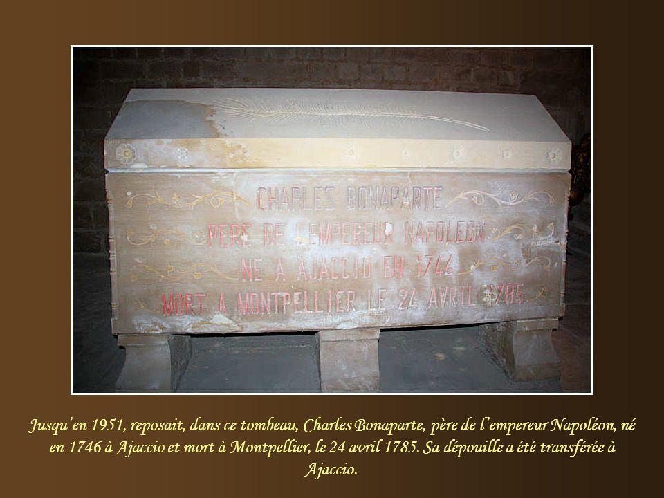 Jusqu'en 1951, reposait, dans ce tombeau, Charles Bonaparte, père de l'empereur Napoléon, né en 1746 à Ajaccio et mort à Montpellier, le 24 avril 1785.