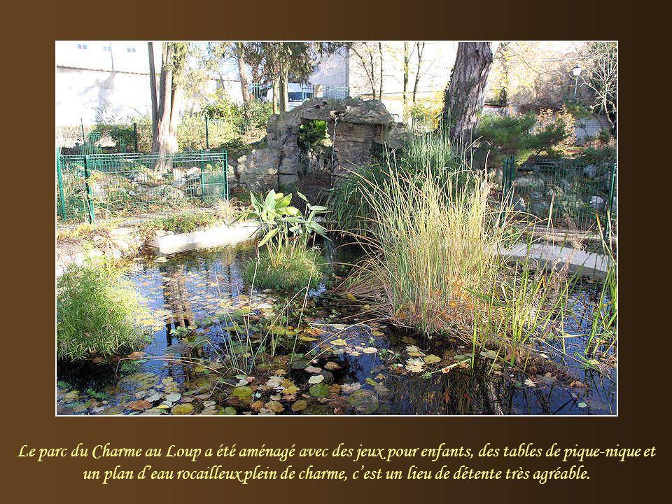 Le parc du Charme au Loup a été aménagé avec des jeux pour enfants, des tables de pique-nique et un plan d'eau rocailleux plein de charme, c'est un lieu de détente très agréable.