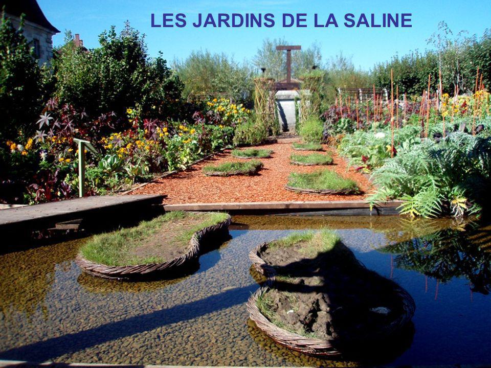 LES JARDINS DE LA SALINE