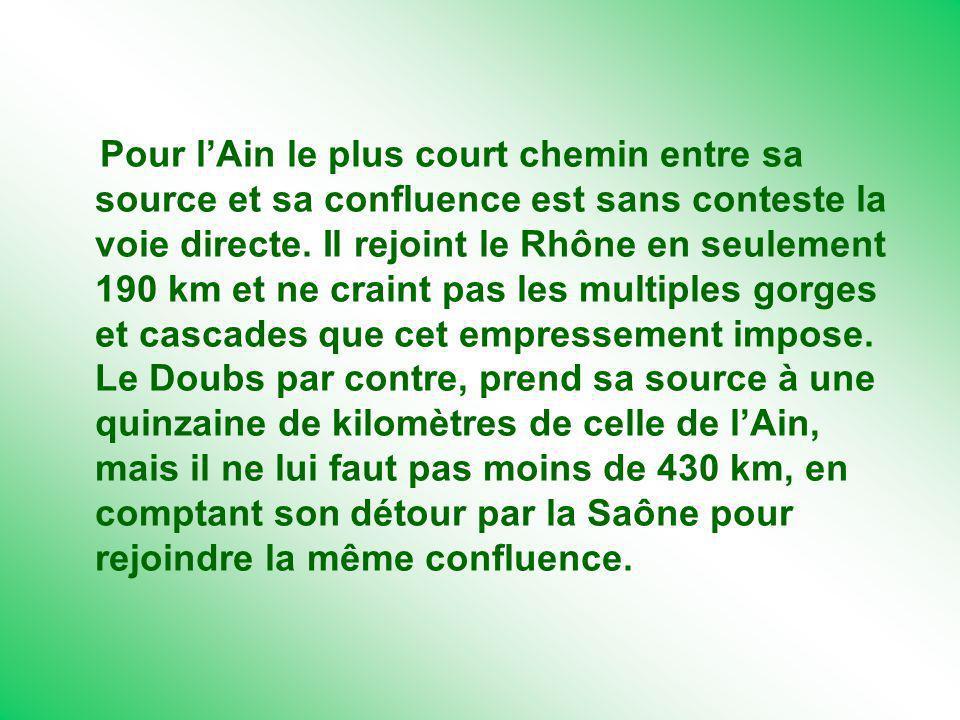 Pour l'Ain le plus court chemin entre sa source et sa confluence est sans conteste la voie directe.