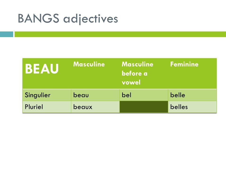 BEAU BANGS adjectives Masculine Masculine before a vowel Feminine