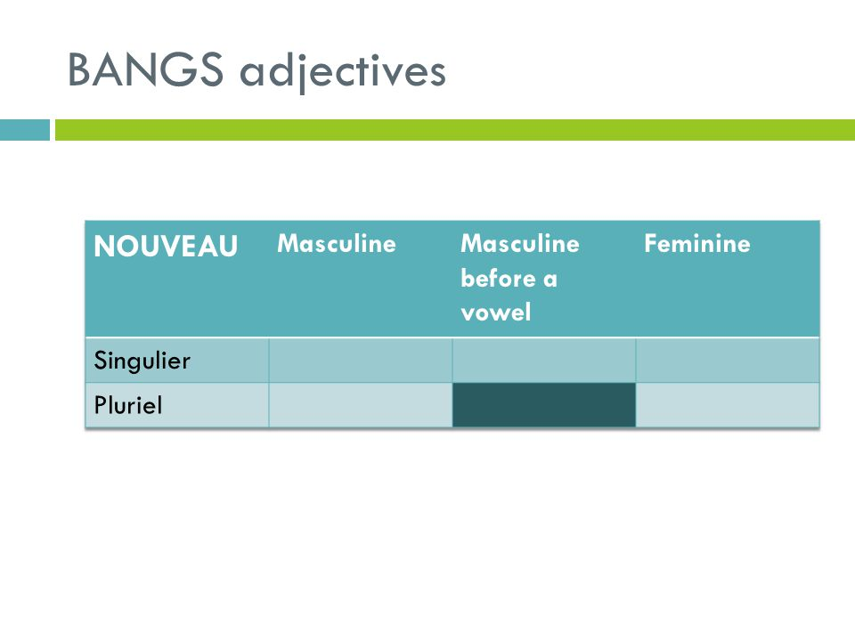 BANGS adjectives NOUVEAU Masculine Masculine before a vowel Feminine