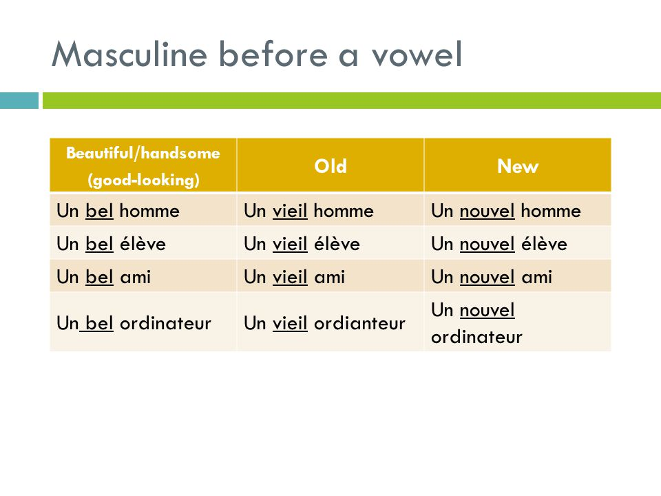 Masculine before a vowel