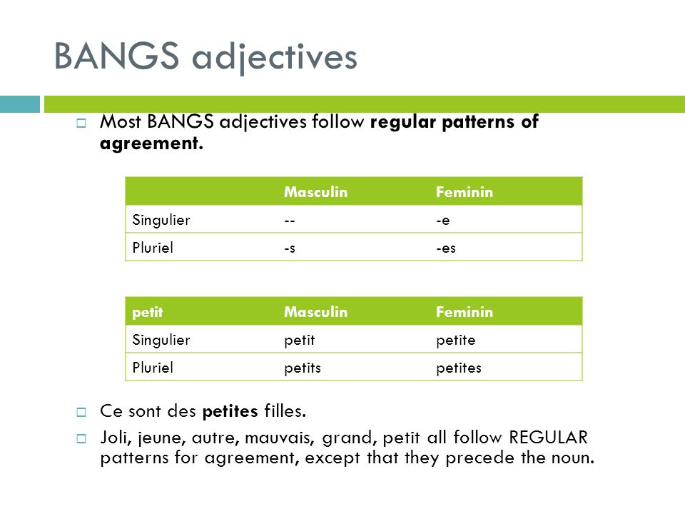 BANGS adjectives Most BANGS adjectives follow regular patterns of agreement. Ce sont des petites filles.