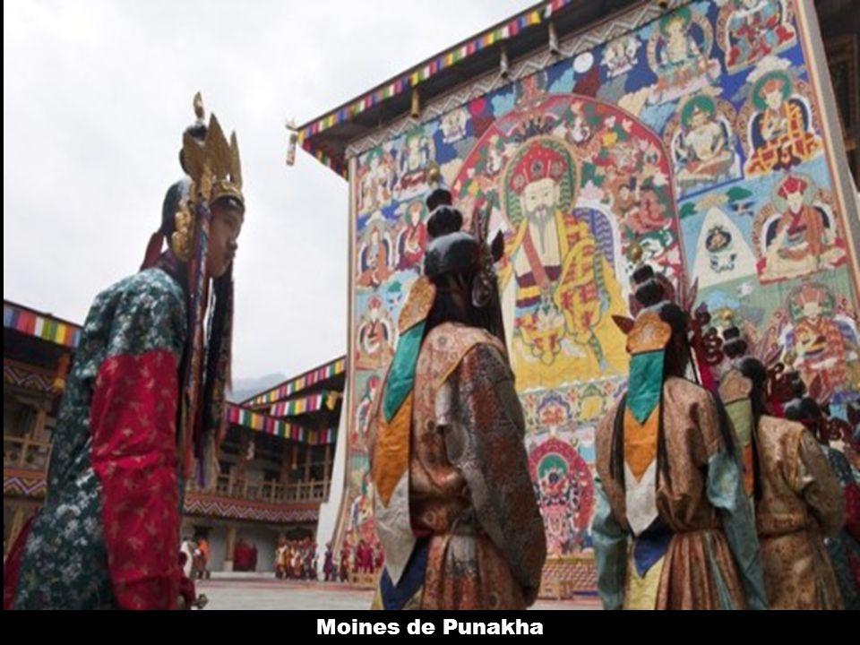 Moines de Punakha