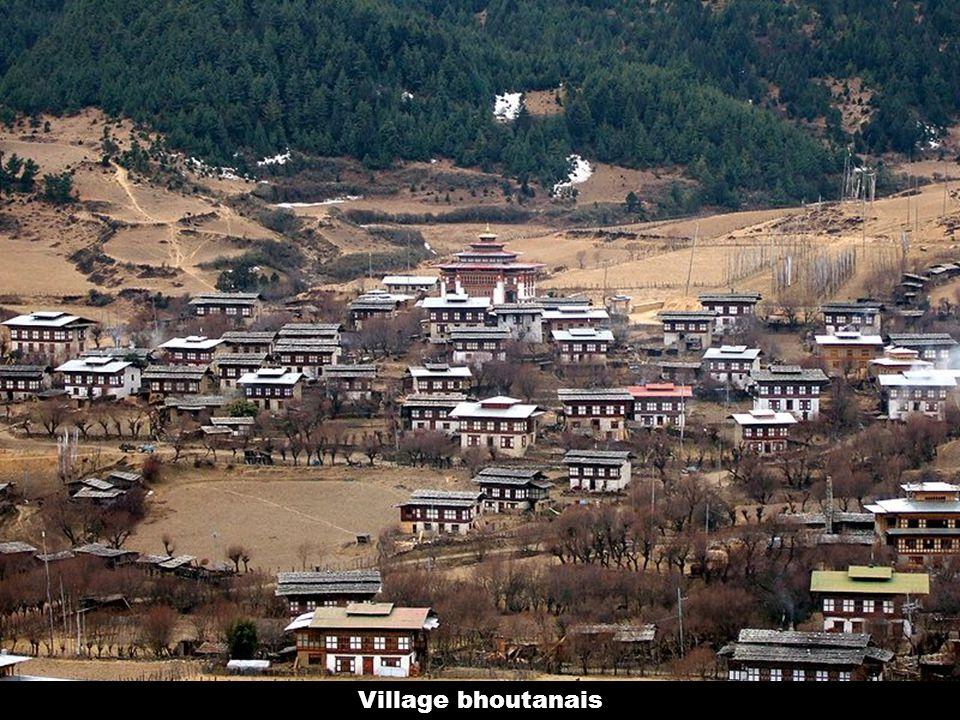 Village bhoutanais