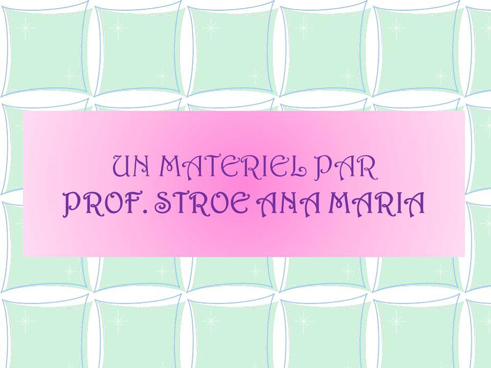 UN MATERIEL PAR PROF. STROE ANA MARIA
