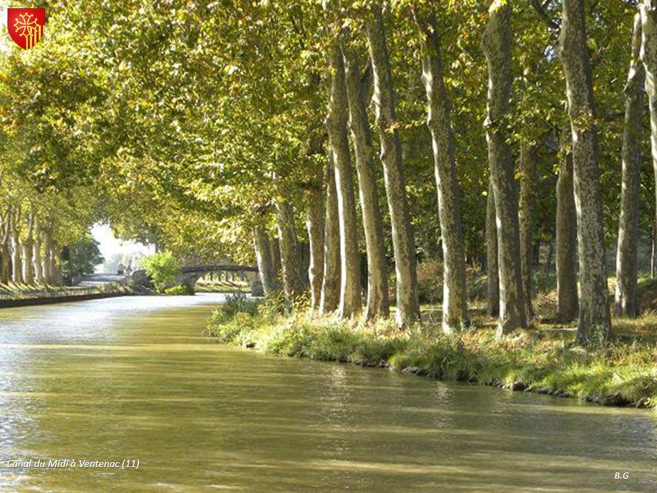 Canal du Midi à Ventenac (11)
