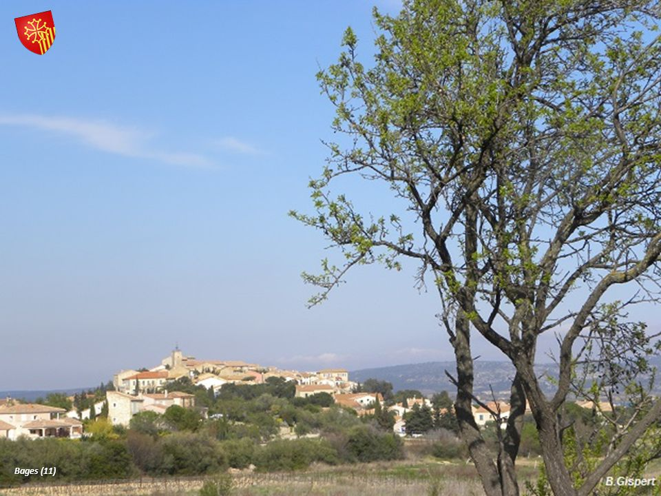 Bages (11)