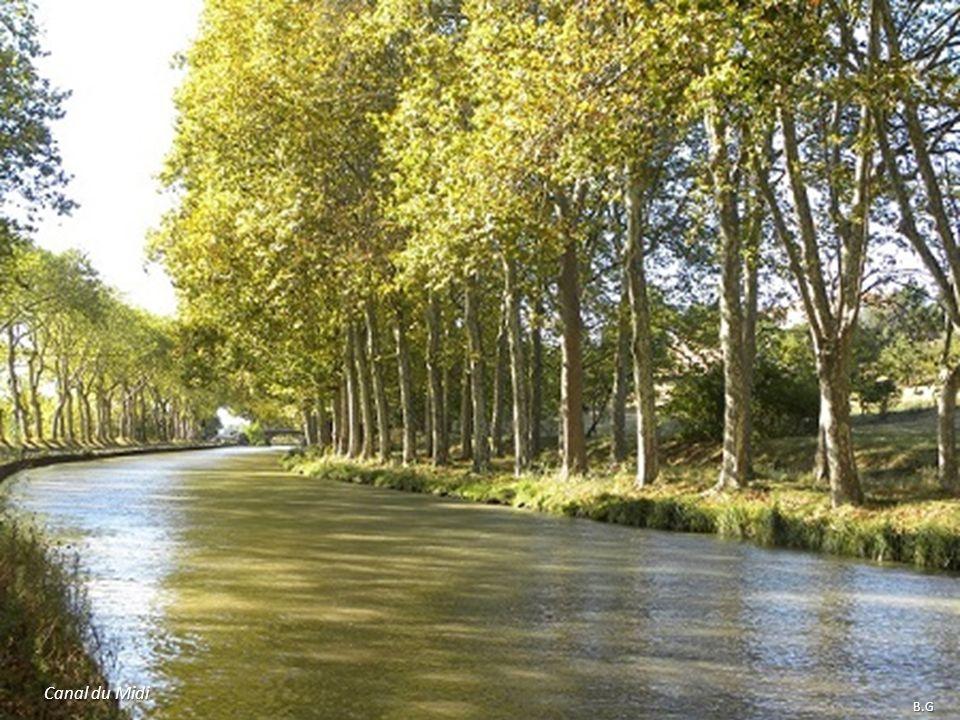 Canal du Midi B.G