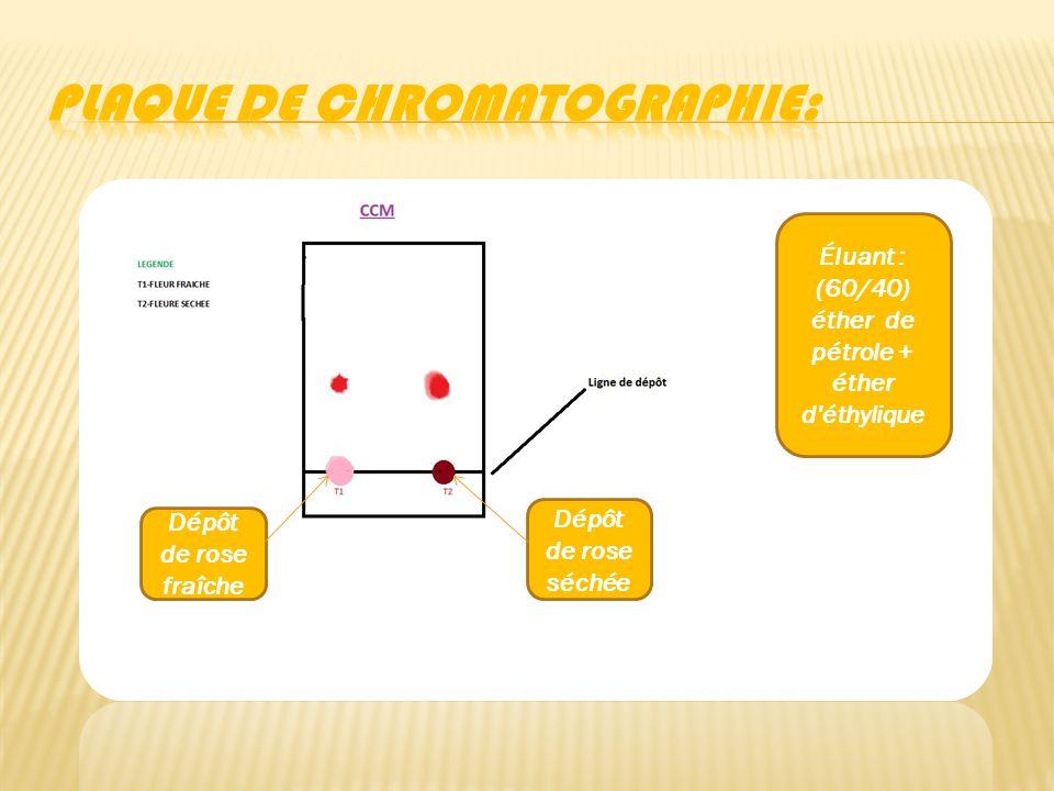 Plaque de chromatographie: