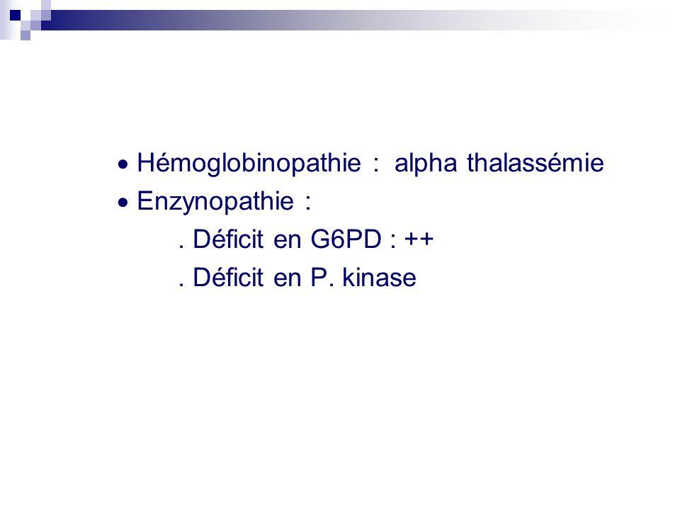  Hémoglobinopathie : alpha thalassémie