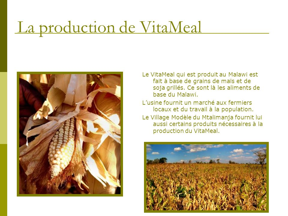 La production de VitaMeal