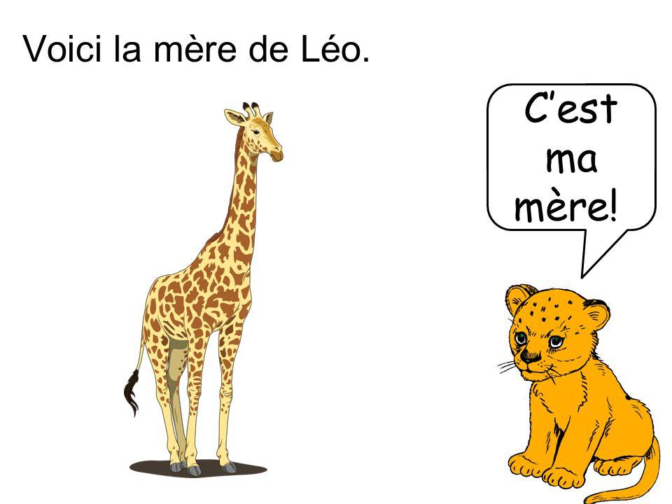 Voici la mère de Léo. C'est ma mère!!