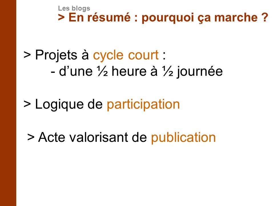 > Projets à cycle court : - d'une ½ heure à ½ journée