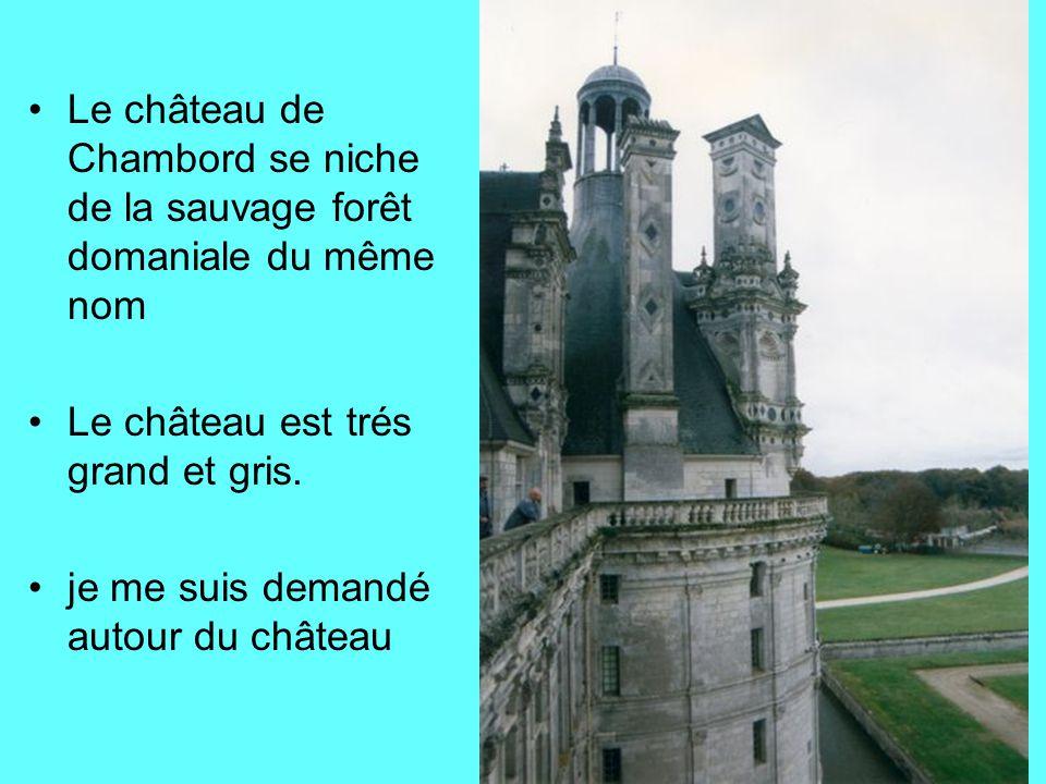 Le château de Chambord se niche de la sauvage forêt domaniale du même nom
