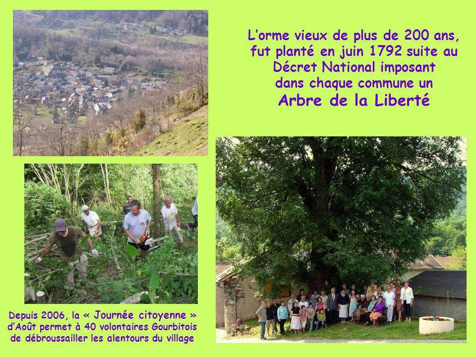 L'orme vieux de plus de 200 ans, fut planté en juin 1792 suite au Décret National imposant dans chaque commune un Arbre de la Liberté