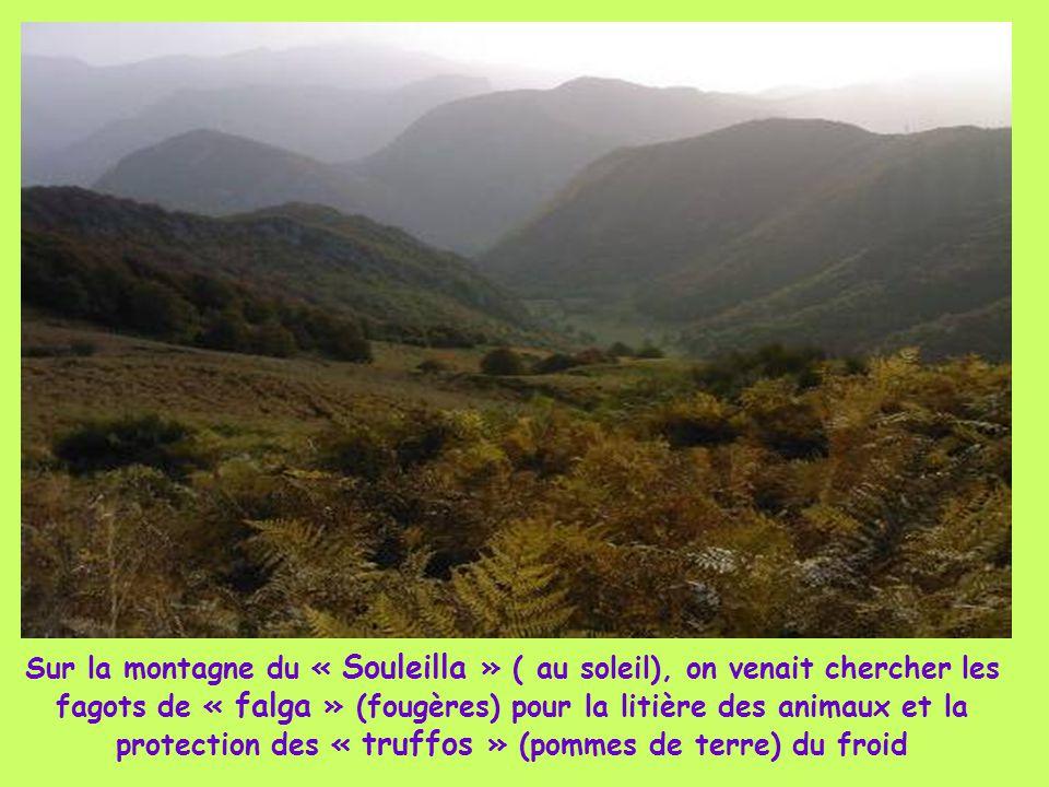 Sur la montagne du « Souleilla » ( au soleil), on venait chercher les fagots de « falga » (fougères) pour la litière des animaux et la protection des « truffos » (pommes de terre) du froid
