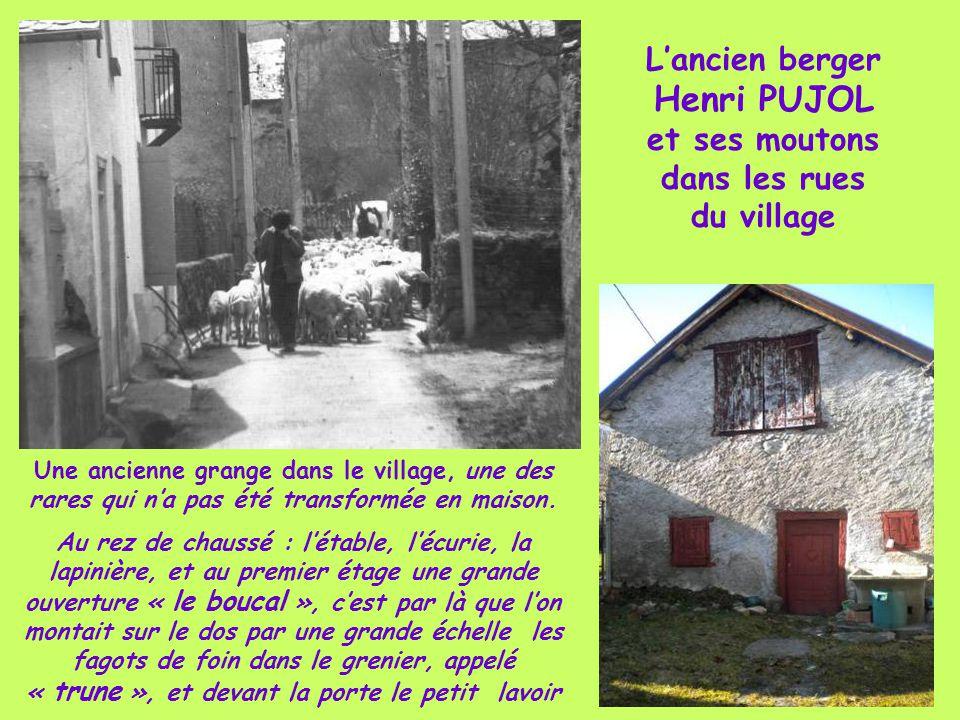 L'ancien berger Henri PUJOL et ses moutons dans les rues du village