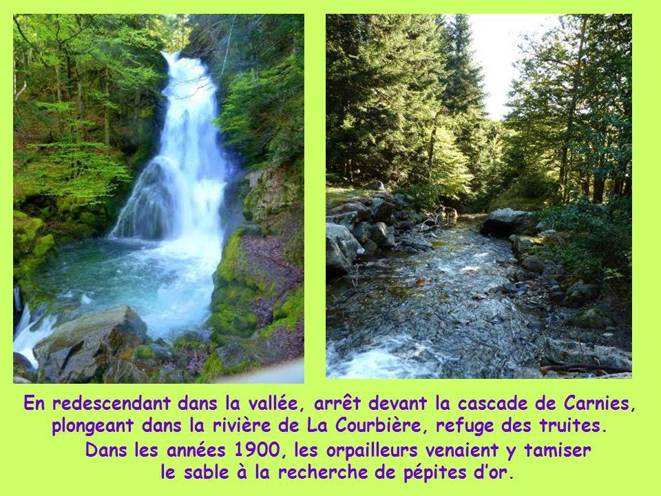 En redescendant dans la vallée, arrêt devant la cascade de Carnies, plongeant dans la rivière de La Courbière, refuge des truites.