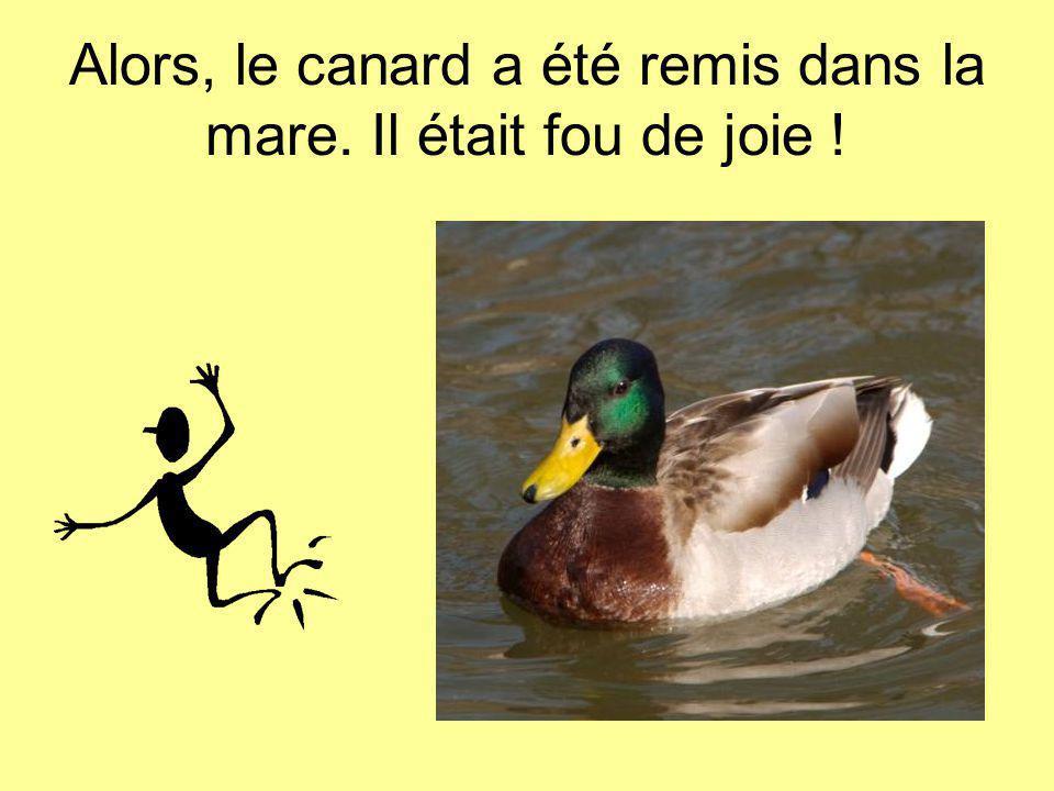 Alors, le canard a été remis dans la mare. Il était fou de joie !
